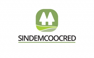 Sindemcoocred